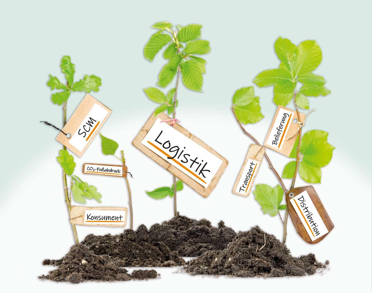 Nachhaltigkeit: Wie grün ist die Logistik? - Umwelt-, Klimaschutz und Nachhaltigkeit | News - Logistik Heute